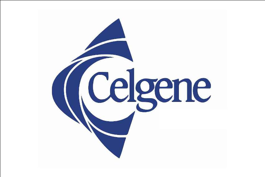 Prof. Dr. med. Holger Hebart - Celgene
